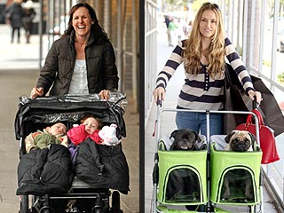 Out for a Stroll: Molly Shannon's Babies & Brooke Mueller's Pugs