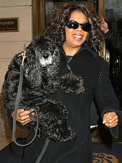 PETA Picks Oprah Winfrey 'Person of the Year'