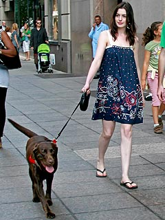 Anne Hathaway and Her Ex: Who'll Get the Dog?