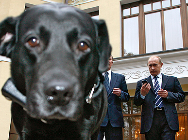 Russia's Top Dog Gets Sat Nav