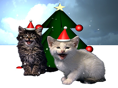 Jingle Meows, Jingle Meows, Jingle All the Way!