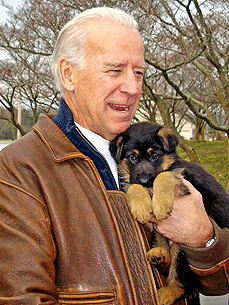 Biden Will Get a Second Dog From the Pound