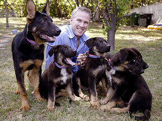 Five Puppies Cloned from 9/11 Hero Dog