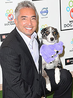 PEOPLE Pets: What You Don&#39;t Know About Cesar Millan