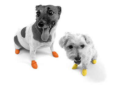 Finally, Rubber Booties Your Dog Will Actually Wear!