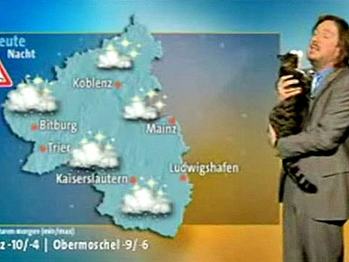 Cat Rains on German Weatherman's Newscast