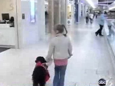 Dog's Peanut-Sniffing Skill Keeps Little Girl Alive