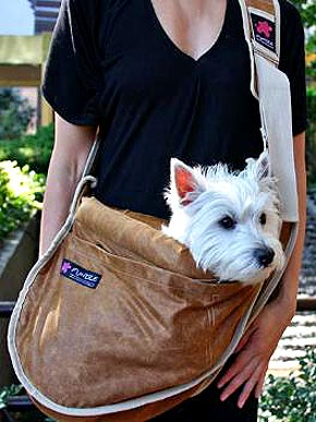 Sling for Pups: Get Carried Away!
