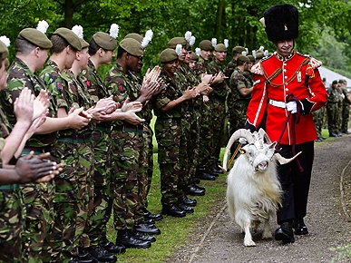 Bye-Bye, Billy! Mascot Goat Bids Farewell to the Army