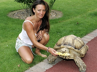 Tortoise Heist! Stolen Turtle Is Returned to Rightful Owner