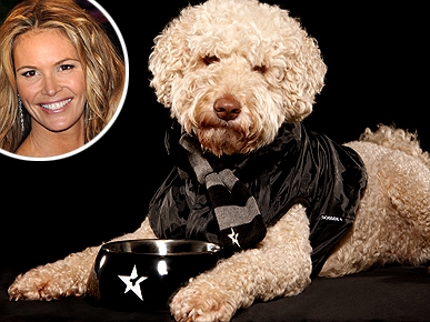 Model Mutt! Elle Macpherson's Dog Lands Modeling Contract