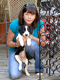 The Water Bowl: Heidi Fleiss Sued Over Pet Grooming Business, Plus: A Dog That Chews Tires!