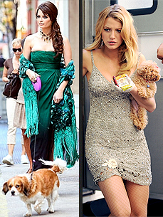 Who's a More Glamorous Dog Mom: Mischa Barton or Blake Lively?