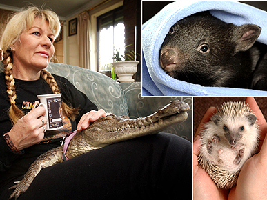 POLL: Skunks and Crocs As Pets – Wild or Just Plain Weird?