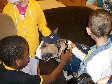 Canine Champ Bring Smiles to Sick Kids at the Ronald McDonald House