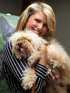 Christie Brinkley's Dog Maple Sugar Is a Sweetie With Her Bird Pal