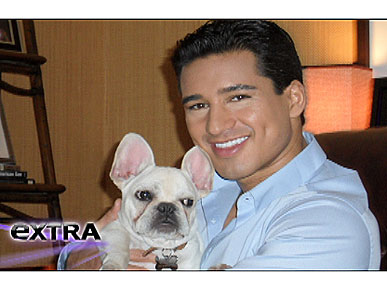 Mario Lopez Welcomes a French Bulldog!