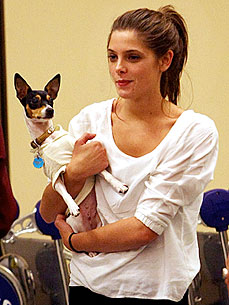 Ashley Greene: Dog Marlo Is My &#39;Constant&#39;