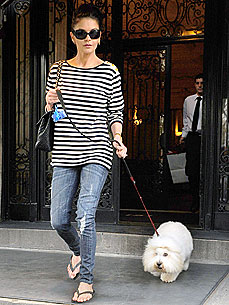 Photo of Catherine Zeta-Jones & her Dog Figaro