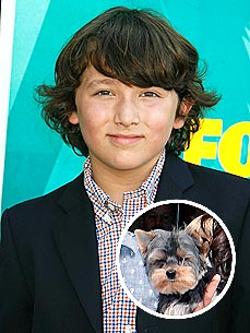 Who's Kissing the Youngest Jonas Brother? New Pup Riley