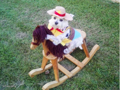Caption Contest: Is That a Dog on a Horse?