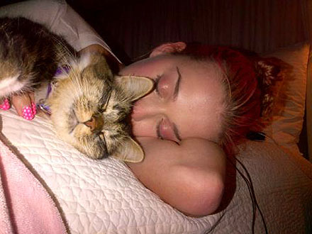 Katy Perry Tweets Photo of Her and Cat Kitty Purry Sleeping