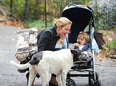 Kelly Rutherford&#39;s Dog Might Be a Socialite