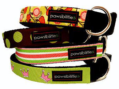 The Style Choices are Endless with Pawsibilities Collars