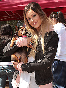Lacey Schwimmer Falls in Love – with a Rescue Dog!