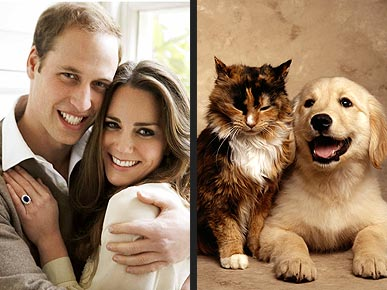 Cat People Love ... Prince William (and Cats)!