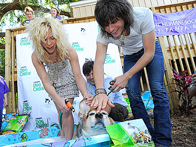 Country Stars The Band Perry Go to the Dog Wash