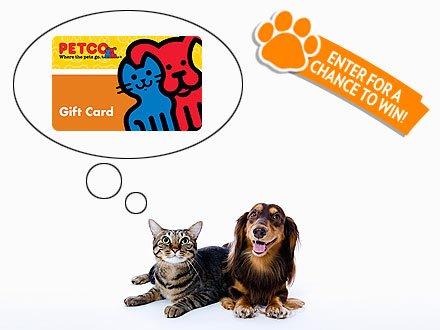 Giveaway! People Pets Daily Prize Pack Sweepstakes