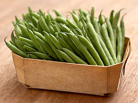 Would You Try a Green Bean Diet for Dogs?