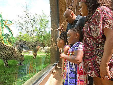 Spotted: Reverend Run Visits Cheetah Run!