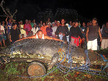 Giant Crocodile Captured in Philippines