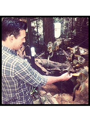 LeAnn Rimes, Eddie Cibrian at Playboy Mansion with Monkeys: Photo