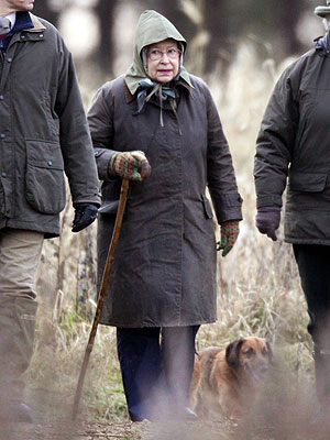 Queen Elizabeth's Dogs Struck by Mystery Illness