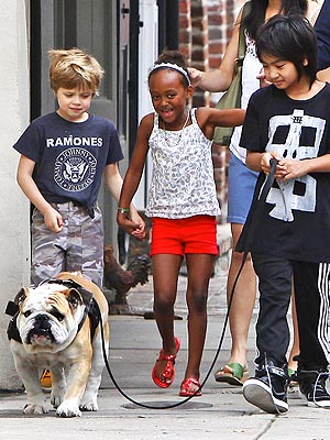 Jolie-Pitt Children Walk Their Bulldog in New Orleans | Maddox Jolie-Pitt Cover, Shiloh Jolie-Pitt, Zahara Jolie-Pitt