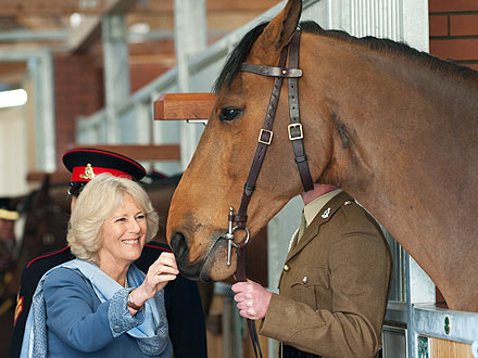 Camilla Gets Friendly with Horses on Visit to Royal Artillery