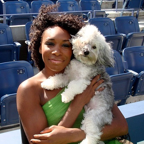 Olympians and Their Pets!