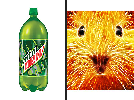 Mountain Dew Would Disintegrate a Mouse
