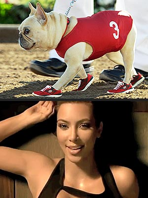 Kim Kardashian Replaced by Dog in Super Bowl Ad