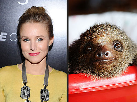 Kristen Bell: Adorable Sloth Videos