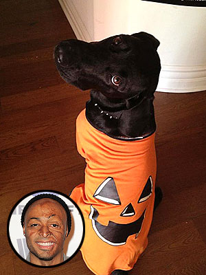 J.R. Martinez Gets His Dog Ready for Baby