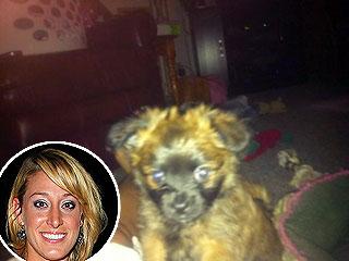 Vienna Girardi Gets a New Dog