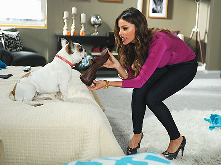 Sofia Vergara Dislikes Modern Family Dog Stella