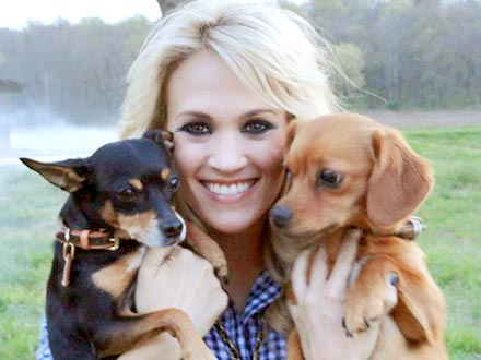 Carrie Underwood Takes Dogs to Work