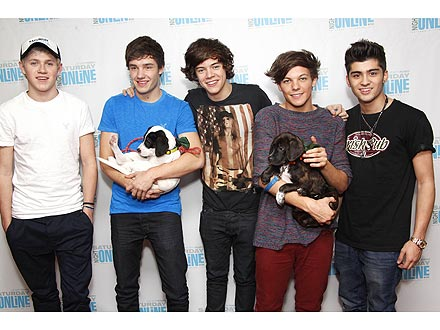 One Direction Wants Dog on Tour