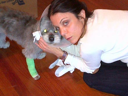 Update: Bethenny Frankel's Dog Sporting Cone After Hospital Stay