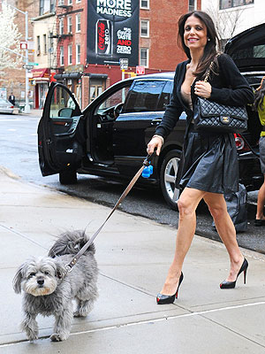 Bethenny Frankel's Dog Cookie in Hospital